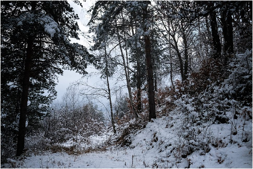 Tips for winter photography